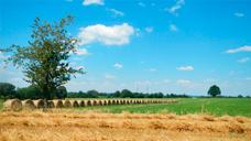 Prix des terres chambre d 39 agriculture vienne - Chambre d agriculture haute vienne ...