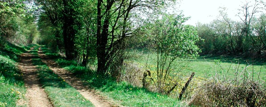 exemple de chemin rurale